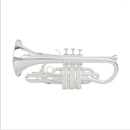 Buena Trompeta de Calidad para Principiantes Estudiantes o Experienciados!