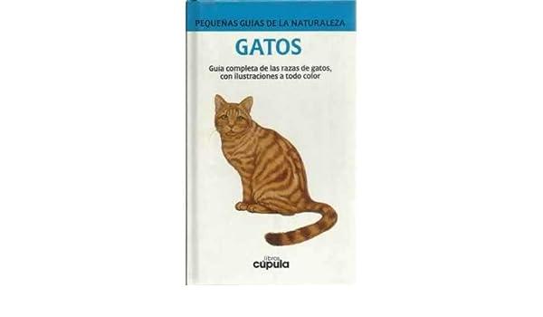 Gatos: Amazon.es: Bell, Chris: Libros