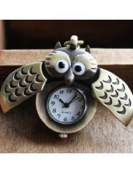 - Hot Sell Antique Bronze Slip Cover Owl Pocket Watch Necklace - BY KSSHOPPING
