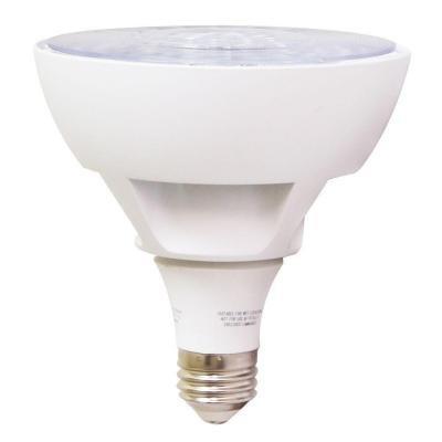 Ecosmart 16 Watt Led Flood Light Bulb - 1