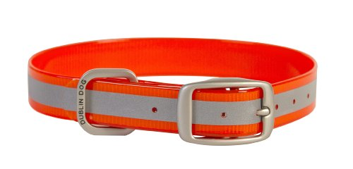 Dublin Dog 12.5-Inch to 17-Inch KOA Reflective Waterproof Dog Collar, Medium, Blaze Orange