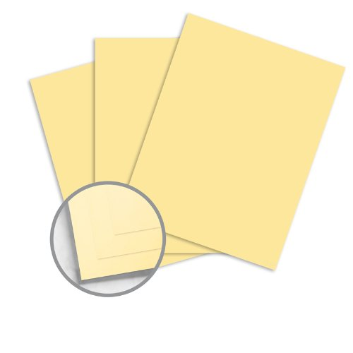 NCR Paper Brand Specialties CF Buff Carbonless Paper - 8 1/2 x 11 in 33 lb Ledger 250 per Package