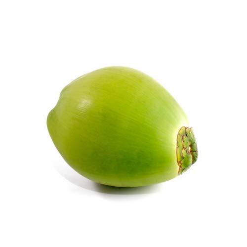 Coco fresco verde – 10 unidades – Coco joven – 100% agua de ...