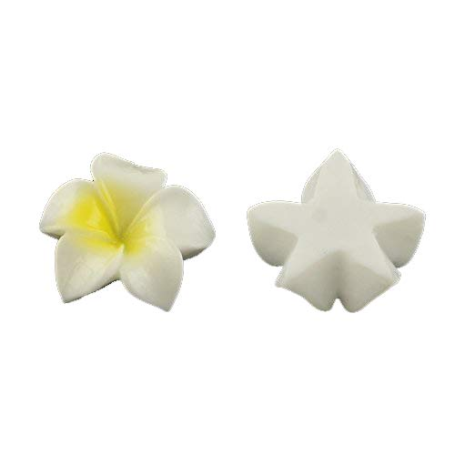 Fimo Plumeria Earrings - Beadthoven 200pcs Resin Plumeria Flower Flatback Cabochons Cameo Charms Embellishment for DIY Jewelry Earring Ring Gluing Making 21x20x6mm