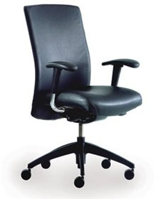Alimed Neutral Posture Leather Balance Chair ()