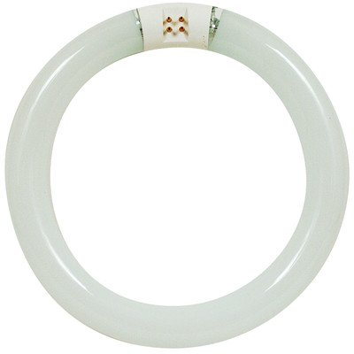 feit electric compact fluorescent - 4