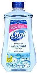 Dial Spring Water Complete Foaming Hand Soap Refill- 40oz