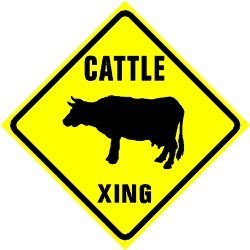 Image result for cattle crossing