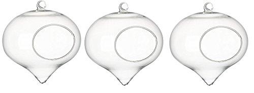 GreenHaus Clear TearDrop Turnip Glass Terrarium Vase/Heart Shaped Hanging Votive Candle Holder, 5/6-inch (3)