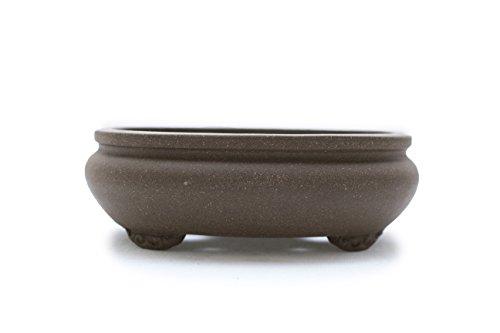 Bonsai Tree Pot 12 Inch Unglazed Oval shape (12)