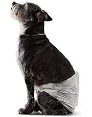 Amazon Basics Male Dog Wrap, Disposable Diapers, Size XS-XL