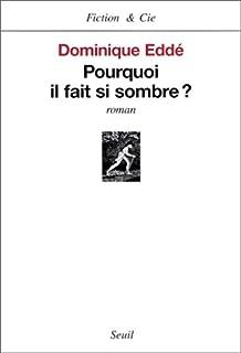 Pourquoi il fait si sombre? : roman, Eddé, Dominique