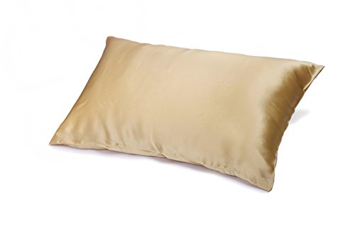 Dreamland All Silk Pillowcase, Gold, 19mm, Standard/Queen Si