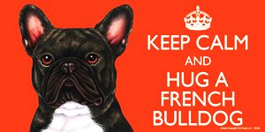 French Bulldog (Brindle) Gift - 'KEEP CALM' LARGE colourful 4' x 8' MAGNET - High Quality flexible magnet for indoor or outdoor use for your Fridge, Car, Caravan or use on any flat metal surface -Water proof and UV resistant. Car-Pets Ltd