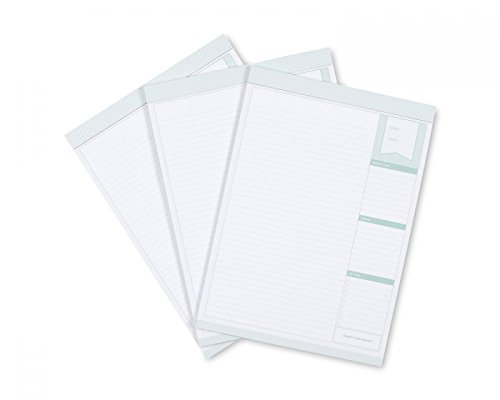 Day Designer for Blue Sky Lined Pad, 3-Pack by BLUESKY
