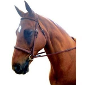 Kincade Raised Padded Fancy Stitched Warmblood Bridle, - Reins Laced Kincade