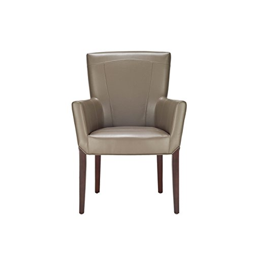 (Safavieh Hudson Collection Greenwich Clay Bicast Leather Arm Chair)