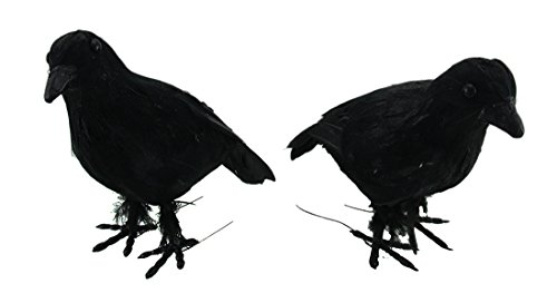 Styrofoam Statues Set Of 2 Sparkly Faux Feather Black Crows 7.5 X 6.5 X 3.75 Inches (Halloween Graveyard Fence Prop)