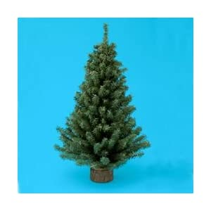 "Kurt Adler 12"" Christmas Tree with Base 40"