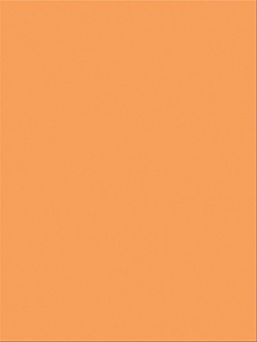 "Pacon SunWorks Construction Paper, 9"" x 12"", 100-Count, Yellow Orange (8504)"