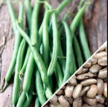 Kentucky Wonder Pole (Brown) Beans, 30+ Premium Heirloom Seeds, ON SALE!, (Isla's Garden Seeds), 99% Purity, 90% Germination, Non Gmo Organic Survival Seeds, Highest Quality! (Kentucky Wonder Pole)
