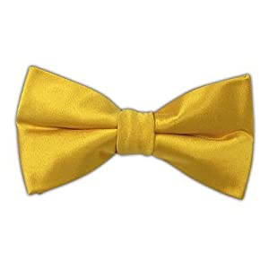 The Tie Bar 100% Woven Silk Vegas Gold Solid Satin Self-Tie Bow Tie