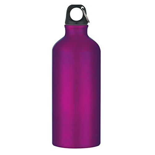 "Logotastic 5701-PE2 Tundra Aluminum Bike Bottle(36 Pack), 19""/16.5 oz/20 oz, Purple from Logotastic"
