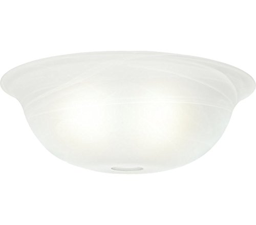 Glass Shade Marble (Casablanca 99057 Swirled Marble Standard Shape Glass Bowl)