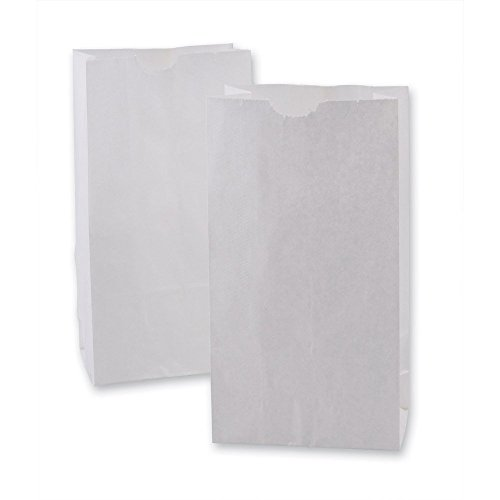 Green Direct Perfect White Durable Paper Lunch Bag Size Small for All Ages Pack of 50 -