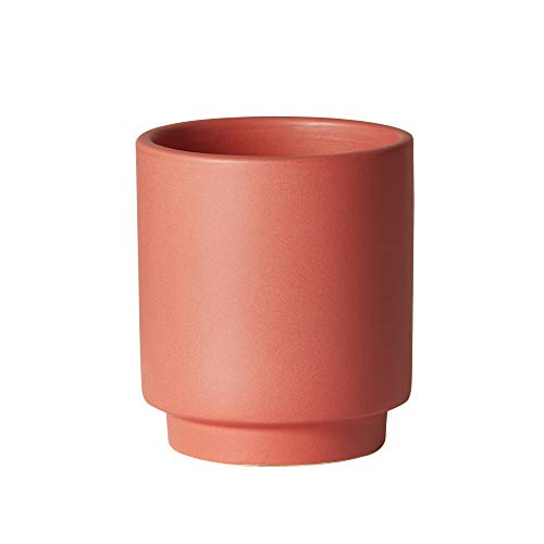 Earthenware Planter - The Sill Ceramic Planter | High Line Indoor Pots for Plants | Earthenware Cylinder Planter for Small Plants and Flowers | Mini, 5 x 4 inches, Pale Red