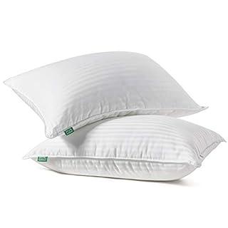 Fern and Willow Premium Loft Down Alternative Pillows for Sleeping (2-Pack) - Luxury Gel Plush Pillow, Hypoallergenic (Standard)