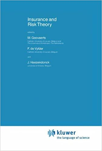 Book Insurance and Risk Theory (Nato Science Series C:)
