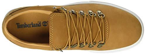 Hombre para Wheat de Cordones Timberland Zapatos Alpine Cupsole Adventure 0 2 231 Marrón 68wqzR1