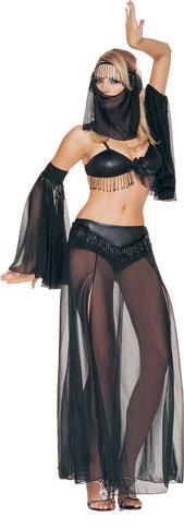 Arabian Dancer Costume - One Size - Dress Size 6-12