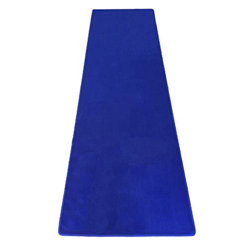 Royal Blue Carpet Aisle Runner for Events (3 ft Wide x 20 ft Long, Royal Blue) ()