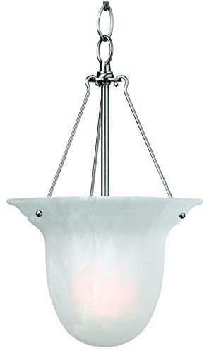 (Dolan Designs 661-09 1Lt Satin Nickel Richland 1 Light Pendant)