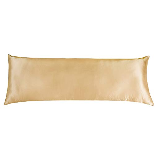 Cozysilk Silk Body Pillowcase with Zipper, 100% Silk on Both Sides, 19mm Zippered Silk Body Pillow Cover Pillow Case (20 x 54, Champagne)