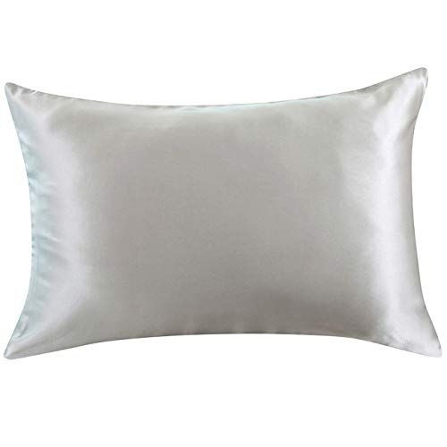 Mulberry silk pillow case