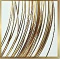 "14kt Gold Jewelry Wire 26 Gauge 14k Hard Temper (Qty=12"") by uGems"
