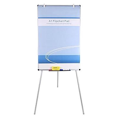VIZ-PRO Light Whiteboard/Flipchart Easel