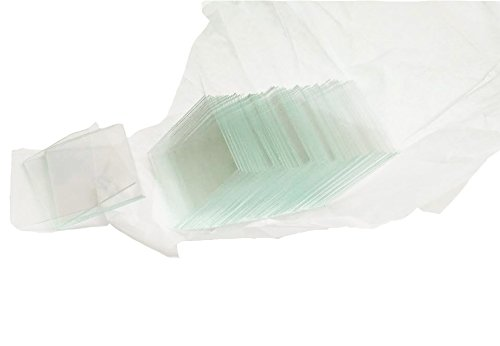 Glass Cover Slip, 26mm Length, 22mm Width, 0.5mm Thickness LAB Professional Glass Cover Slips Hemocytometer (Bundle of 500) ()