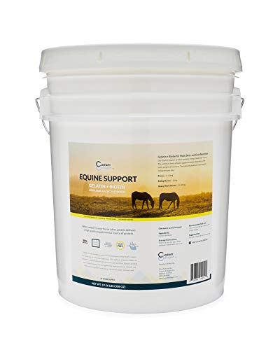 Equine Support Gelatin + Biotin 44 Week Supply | Horse Hoof, Joint, and Coat Supplement | Grain Free | Grow Stronger Hoof | Scoop Included
