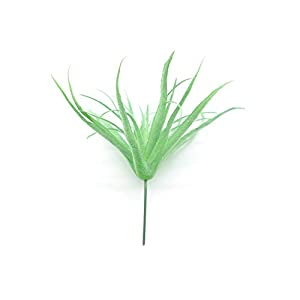Yokoke Artificial Pineapple Grass Air Plants Fake Flowers Faux Succulents Flocking Tillandsia Bromeliads Home Garden Decor 2 Pcs 8.7 Inches 7