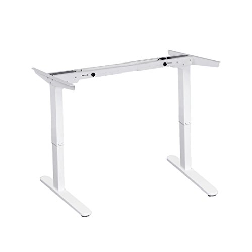 FlexiSpot Adjustable Electric Standing Automatic