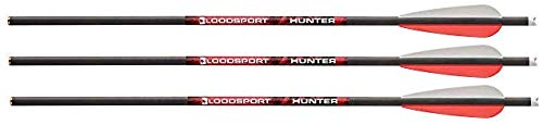 Bloodsport 20-Inch Crossbow Bolts (Pack of 6), 0.003-Inch