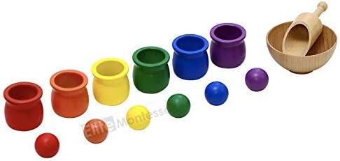 Elite Montessori Preschool Sorting Activity Colored Balls and Cups