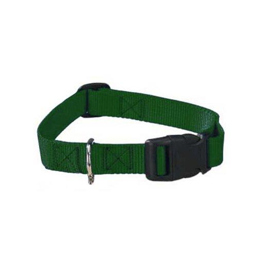 "Guardian Gear Nylon Adjustable Dog Collar with Plastic Buckles, Fits Necks 10"" to 16"", Hunter Green"