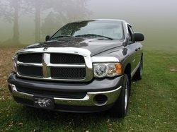 (Stampede 2243-8 Vigilante Premium Hood Protector for Dodge (Chrome))