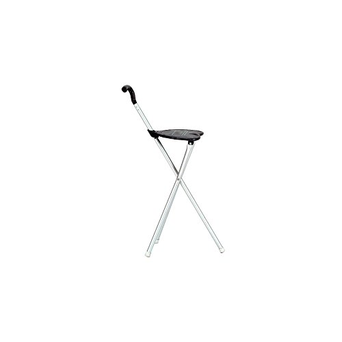 - ProActive Sports Chair and Walking Stick