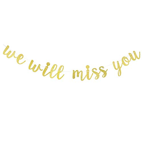 We Will Miss You Banner for Going Away Party or Retirement Decorations, Farewell Party Decorations, Office Work Party Sign